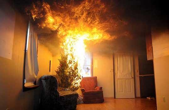 Varför julgranen är en stor brandrisk