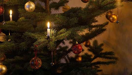 Varför är julgranen en stor brandrisk?